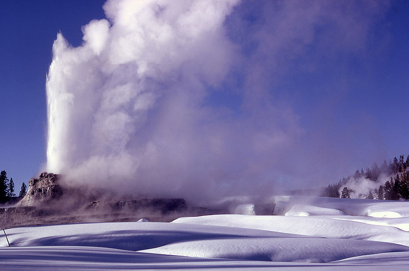 geyser yellowstone in winter