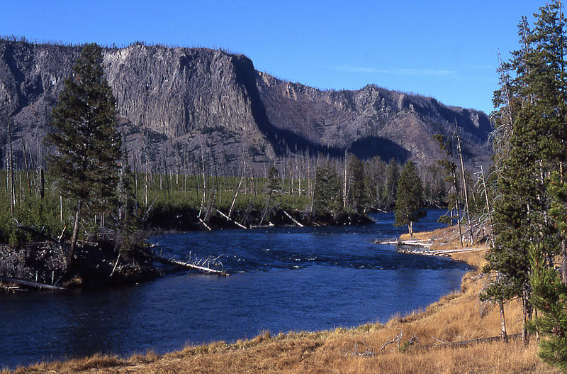 Fly fishing montana 39 s madison river backroad to yellowstone for Fly fishing yellowstone river