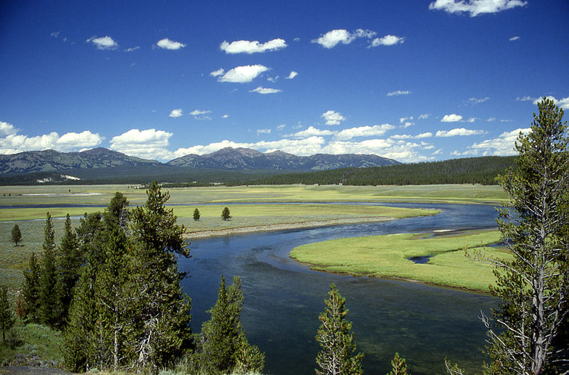 yellowstone river during summer