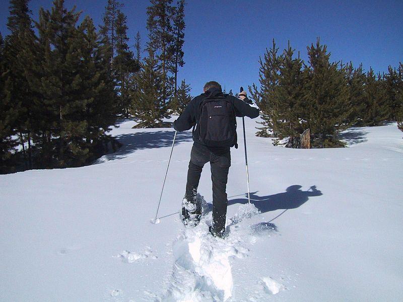snowshoeing montana