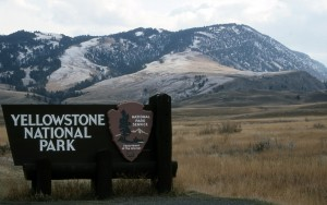 yellowstone national park west entrance welcome sign near virginia city, mt