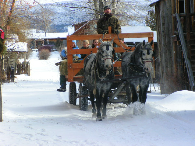 winter activities in Ennis, MT: horse drawn carriage through downtown Ennis in the snow