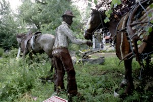Cowboy Jake-Pack Horse